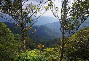 homestay seremban pusat rekreasi gunung angsi